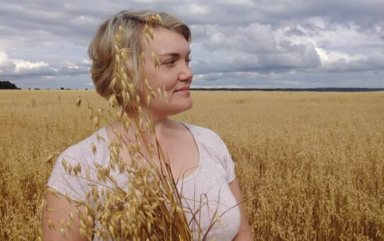 Хлебное поле. Осень. 2020