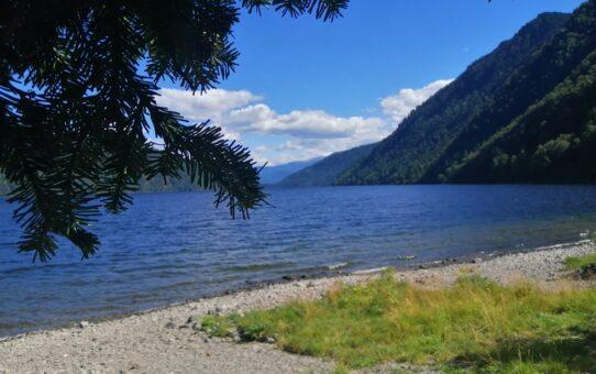 Горный Алтай. Телецкое озеро. Разное